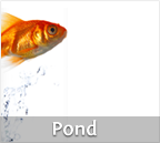 Pond Products